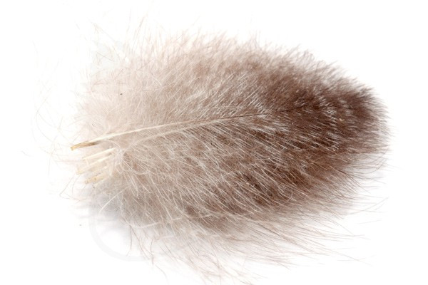Ultra Selected CDC feathers in natural colors